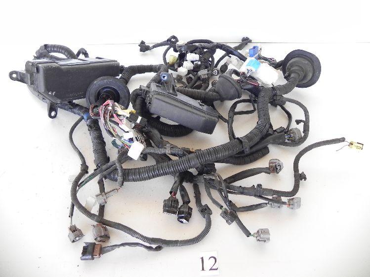Magnificent 12 Lexus Is300 Wire Harness Engine Room Main 24 82111 53242 With Wiring Cloud Hisredienstapotheekhoekschewaardnl